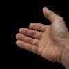 Noodkreet: helpende handen gevraagd!